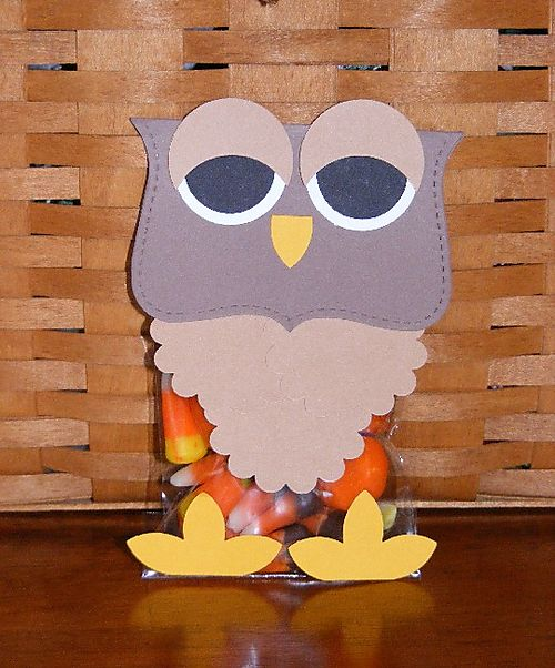 Big shot owl