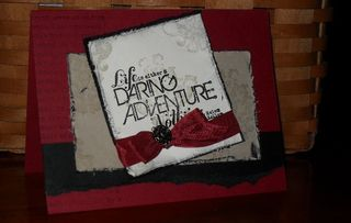 Daring Adventure by Shelby F