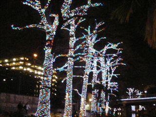 Christmas 2011 - home 2253
